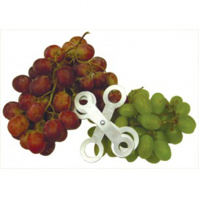Table grape and small fruit sizer
